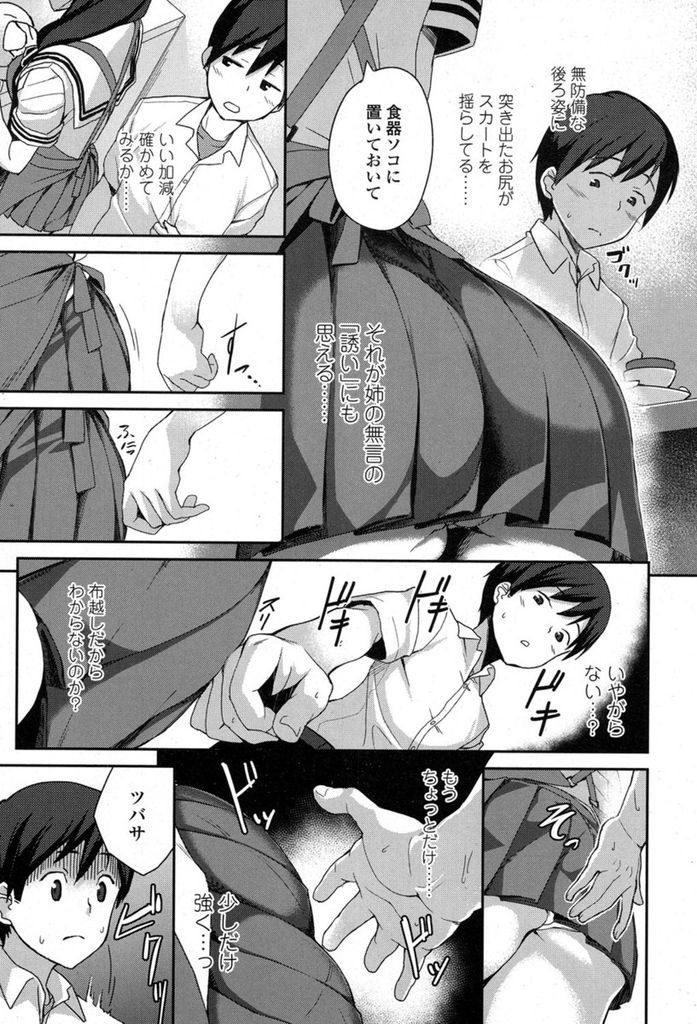 【エロ漫画】自分に対して熱い視線を向けてくる巨乳の姉…両親が不在の時に抑えていた気持ちを吐き出すように激しくセックスを求める【石鎚ぎんこ:姉線】